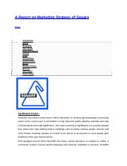 A Report on Marketing Strategy of Square.docx