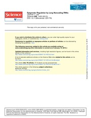 Epigenetic Regulation by Long Noncoding RNAs Science-2012-Lee-1435-9