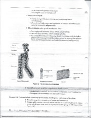 Chemistry Notes 8
