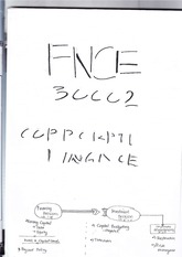 FNCE30002 - Study guide 1