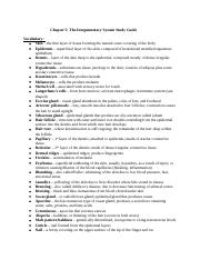 Chapter 5 The Integumentary System Study Guide(1) (1).docx