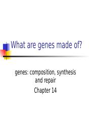 2015-chapter14-DNA replication-students.ppt