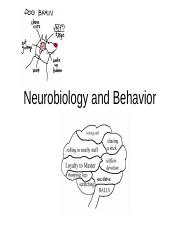 2015 Brain and Behavior.ppt