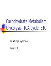 Metabolism of Carbohydrates-Lesson 3.ppt