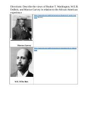 Black Nationalist (1).docx