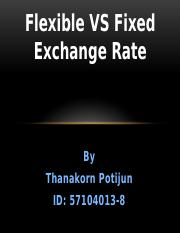 Flexible VS Fixed Exchange Rate