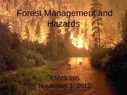 Foresty and Hazards - for posting