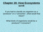 Chapter 28-How ecosystems work