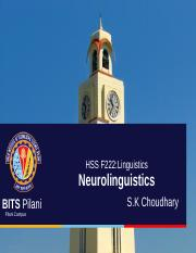 Linguistics-neurolinguistics