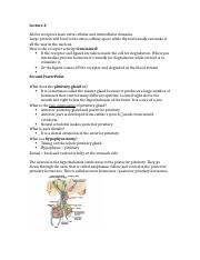 Endocrinology Lecture 4