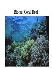 coral reef biome expanded