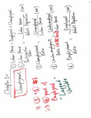 ECON A232F_Lecture_3_Class_Notes.pdf