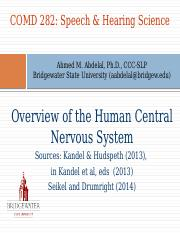 Nervous System-Overview 2016