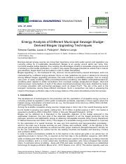 Energy Analysis of Different Municipal Sewage Sludge-Derived biogas upgrading techniques