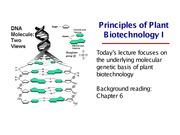 Revised L22. Principles of Plant Biotechnology 1