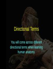 Lecture_8_Nervous System overview