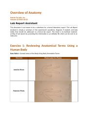 bio235_lab_report_overview__Sherby_K.docx