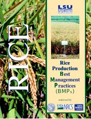 2805rice_412982BFD8BCD