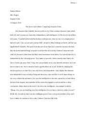 The Secret Life of Bees: Comparing Character Traits Essay.docx