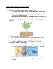 Chapter 29 Nutrition and Transport in Plants