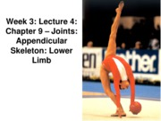 Z331 Fall 2010 Ecampus Week 3 Joints Lecture 4 Lower Limb Posted