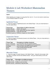 Aaron_Crosby_L6Worksheet.docx