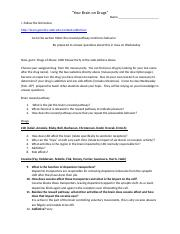Brain reward pathway worksheet