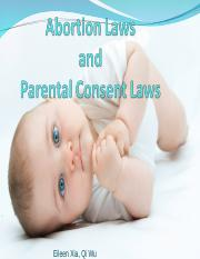 Abortion Laws 2