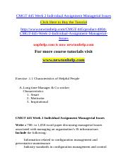 CMGT 445 Week 2 Individual Assignment Managerial Issues.doc