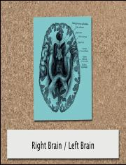 16_Left_Brain_Right_Brain.pdf