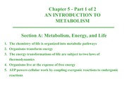 Intro to Metabolism - Notes