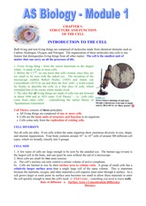Ch 1 - Cells