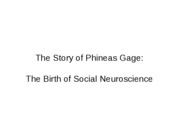 2. F2010-4 PhineasGage