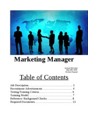 Marketing Manager Man 3301