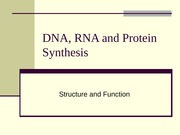 DNA, RNA and Protein Synthesis PPT