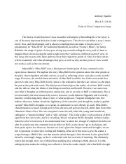 pov comparison essay