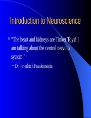 Introduction to Neuroscience 13