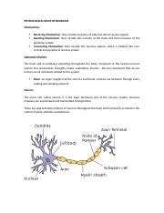Chapter 3 Physiological Basis of Behavior.docx