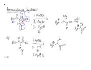 CHM 2220 SS 2013 July 16 Amino Acids CH Continued