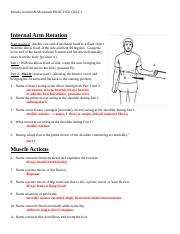 Muscle Actions and Movement PRACTICE QUIZ 2 KEY.docx