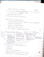 HHP 4533 Notes 12: self- efficacy- ALbert
