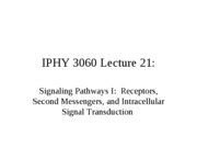 Lecture 19 Signaling Pathways (Receptors, Second Messengers, and Intracellular Signal Transduction)