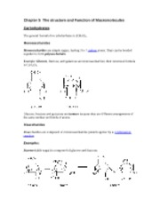 Chapter_5_ NOTES The_structure_and_Function_of_Macromolecules