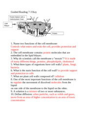 Cell Review Study Guide Key - NAME DATE PERIOD CELL ...
