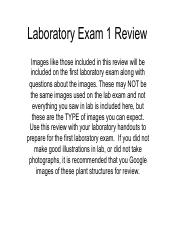 Lab test 1 2015 review.pdf