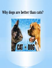 Why dogs are better than cats ppt april.pptx