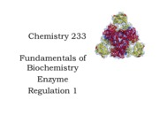 17 233 Chapter 13.0 Enzyme Regulation 1