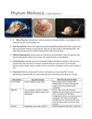Phylum Mollusca (COMPLETE)