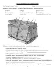 Histology and Integumentary System Worksheet.docx