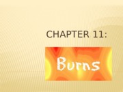 Chapter 11_Burns_(2014)